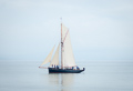 volvo-weekend--mumbles-yacht-club--19-july-2014_14504676339_o.jpg